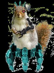 Secrete Cyber Squirrel