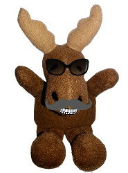 Travel-R Moose